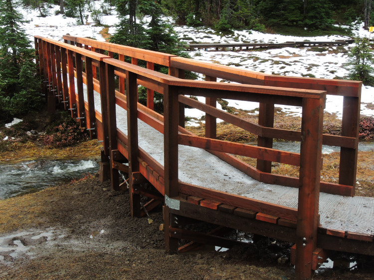 New foot bridge at paradise meadows